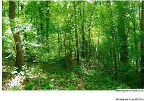 16.5 Acres HWY 78, PELL CITY, St Clair, Alabama, ,Acreage,For Sale,HWY 78,527114